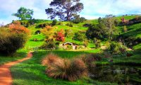 The Shire - Hobbiton