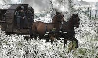 Travel in the Snow via Horse, Carriage and Foot